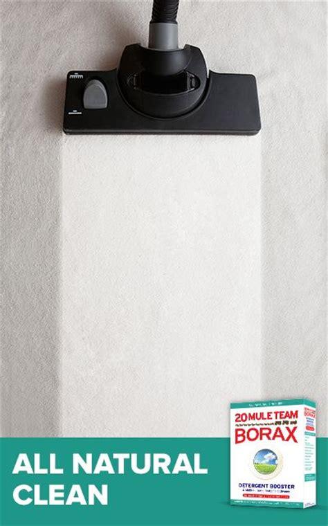 Borax Upholstery Cleaner by Borax Vinegar Salt Carpet Cleaner Carpet Vidalondon