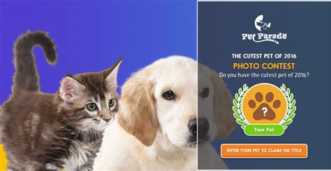 Pet Sweepstakes - the cutest pet of 2016 photo contest from pet parade american sweepstakes