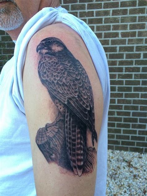 falcon tattoo meaning falcon tattoos designs ideas and meaning tattoos for you