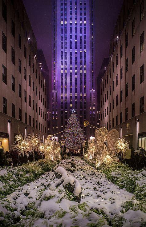 snow   christmas tree  york rockefeller center flickr
