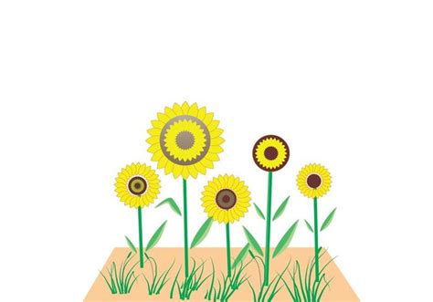 sunflower pattern coreldraw sunflower vector free vector art at vecteezy