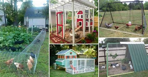 backyard chicken coop plans free 22 low budget diy backyard chicken coop plans