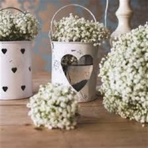 42 best images about gypsophila wedding on
