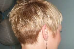2015 haircut back view pixie back view on pinterest short hair back pixies and