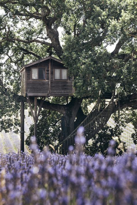 La Suite Bleue by La Casa Sull Albero Suite Bleue La Piantata Casa