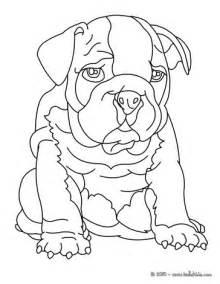 bulldog coloring sheets bulldog coloring pages hellokids