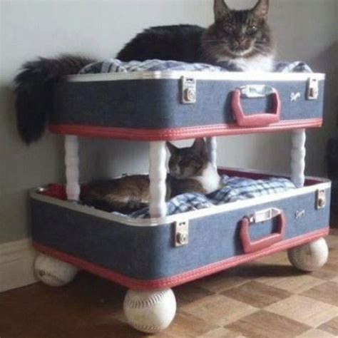homemade recycled cat bed