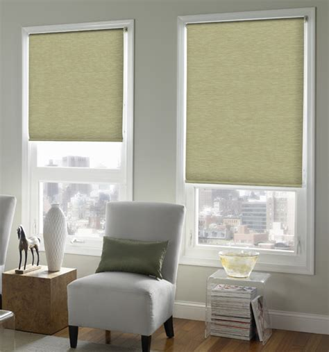 Roller Shades Blackout Shades Window Blinds Room Darkening Shades