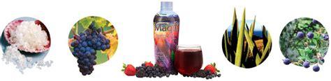 maqui juice berry