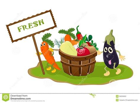 Fresh Vegetables Concept Stock Photos   Image: 35255653