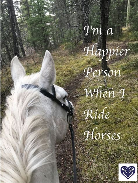 quotes about horses best 25 quotes ideas on