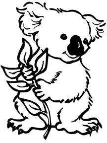 koala coloring pages