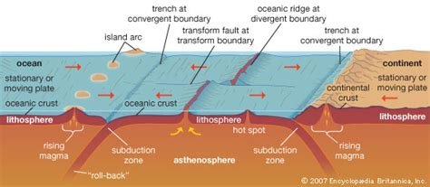 movement of lithospheric plates diagram plate tectonics theory facts evidence britannica