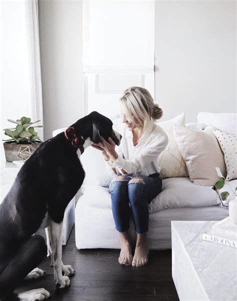 great dane home decor 100 great dane home decor our new more functional