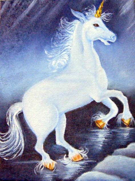 imagenes de varias figuras imagenes de amor unicornios silvestre unicornio quotes