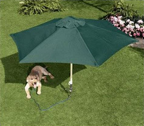 shade for dogs petbrella pet umbrella tie out stake the green