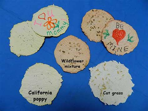 Make Your Own Seed Paper - nasa climate make seed paper