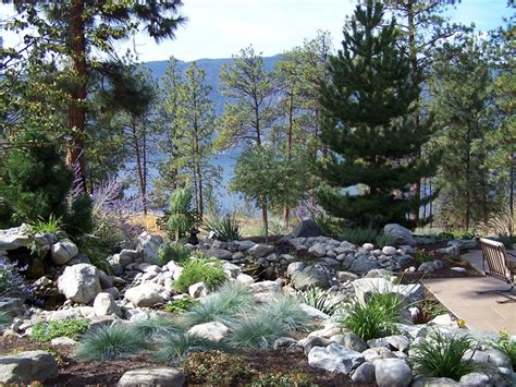 dry creek bed landscaping ideas blogtama useful walkway ideas for landscaping