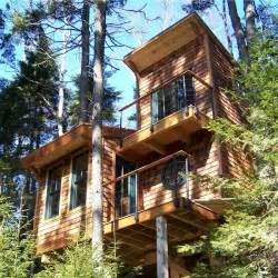 Tiny Tree House Tiny House In The Trees 350 Sq Ft Of Bliss Tiny House