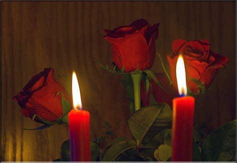 candle light  roses  dozen red roses   bought