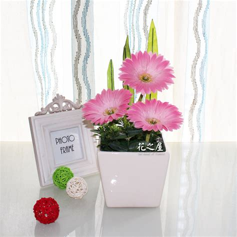 Home Decor Flowers Potted Sunflower Picture More Detailed Picture About Led Flower Pot Gerbera Flowers