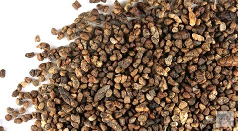 monterey bay spice co cardamom decorticated whole organic