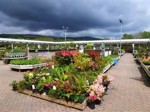 endsleigh plymouth at endsleigh garden centre ivybridge 169 ruth sharville cc