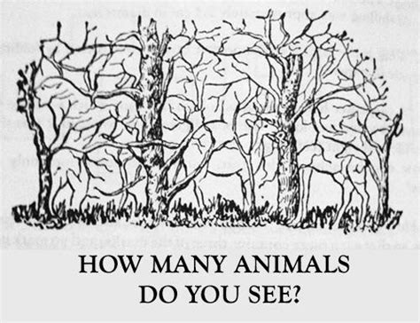 How many animals do you see in this picture girlsaskguys