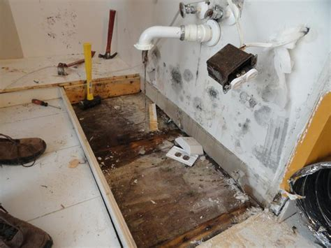 4 places in your home where mold hides asap