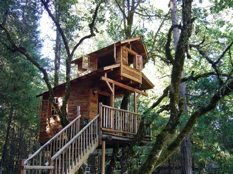 unique  extraordinary treehouses  adults