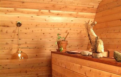 log home interior walls interior log cabin paneling tips interesting ideas for home