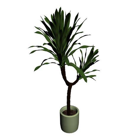 Flower Pot by Yucca Palme Einrichten Amp Planen In 3d