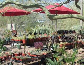 Desert Botanical Garden Phoenix Desert Botanical Garden Membership