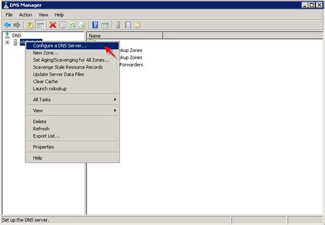 Configure L Server by How To Install And Configure Dns On Windows 2008 Server