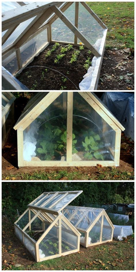 small green house 25 best ideas about mini greenhouse on pinterest recycled windows small greenhouse