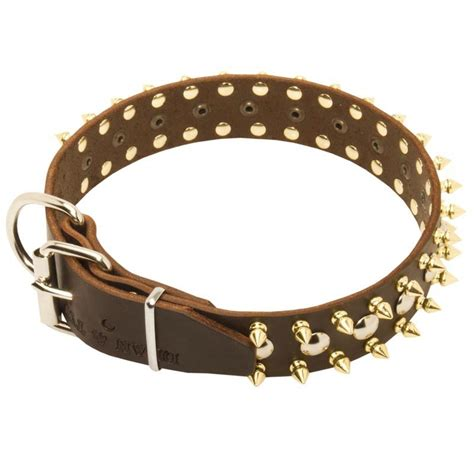 collars for sale buy large spiked collars for bullmastiff for sale