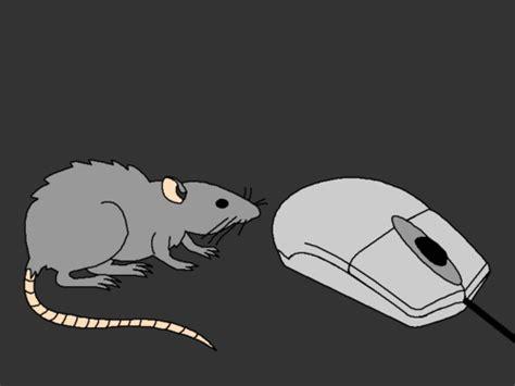 Imagenes Que Se Mueven Con El Mouse | 9 im 225 genes que se mueven con el mouse im 225 genes que se mueven