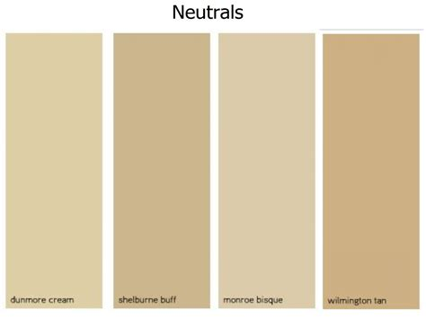 nuetral colors neutral color
