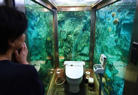 bathroom fish tank 15 of the coolest toilets from around the world