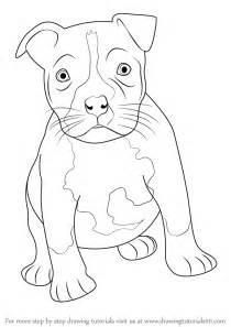 australian shepherd e v pics photos pitbull puppy how to draw a dog cute easy
