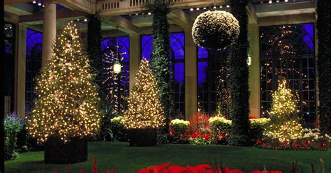 Longwood Gardens Light Show by Longwood Gardens Light Show Phillyvoice