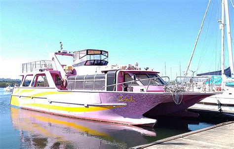 catamaran fast ferry for sale speed boat for sale power boat for sale philippines