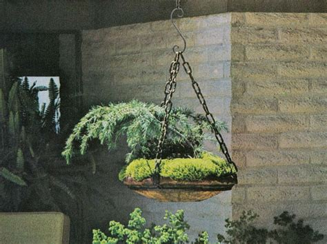 Hanging Garden Ideas Sunset Ideas For Hanging Gardens The Secret Garden