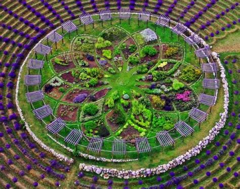 lavender labyrinth michigan pin by t e r i on l a v e n d e r pinterest