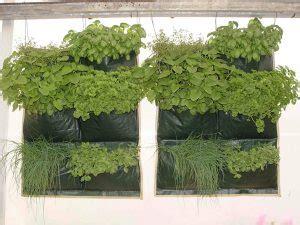 Jual Planter Bag 75 Liter wall planter bag 6 kantong jual tanaman hias
