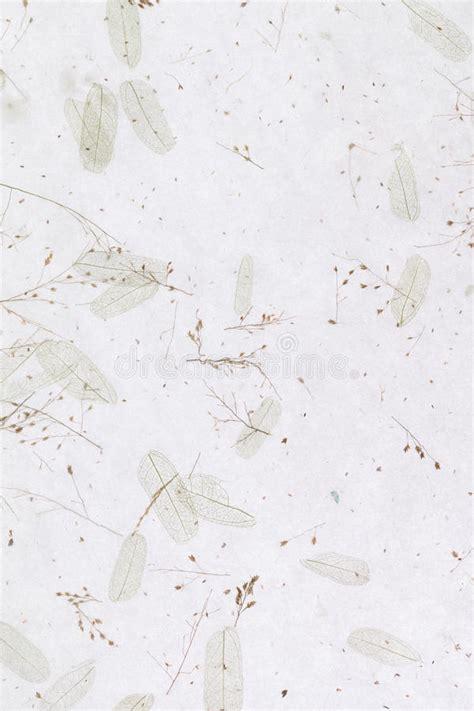 Handmade Japanese Paper - handmade rice paper stock photo image of backdrop nature