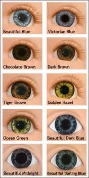 baby eye color chart baby eye color chart memes