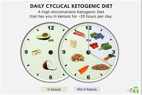 daily cyclical ketogenic diet modified cyclical keto