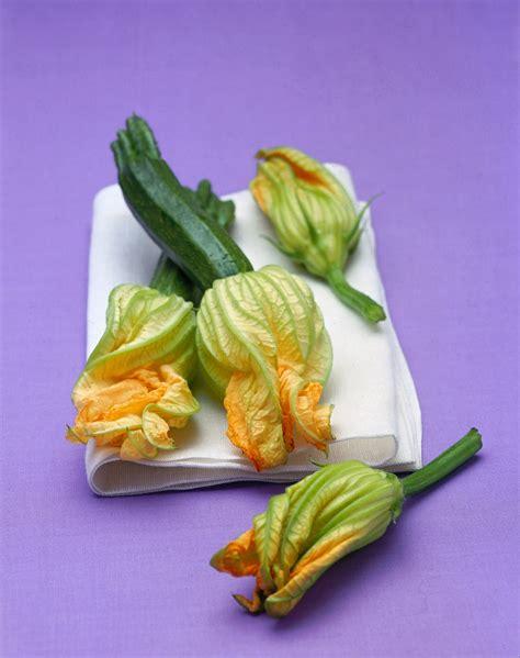 come cucinare i fiori di zucca ripieni come cucinare i fiori di zucca sale pepe