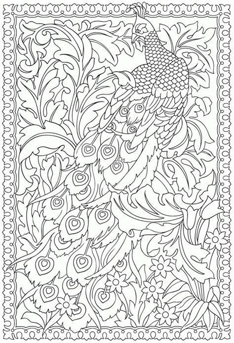 Peacock Coloring Pages For Adults cool coloring pages for adults peacock az coloring pages